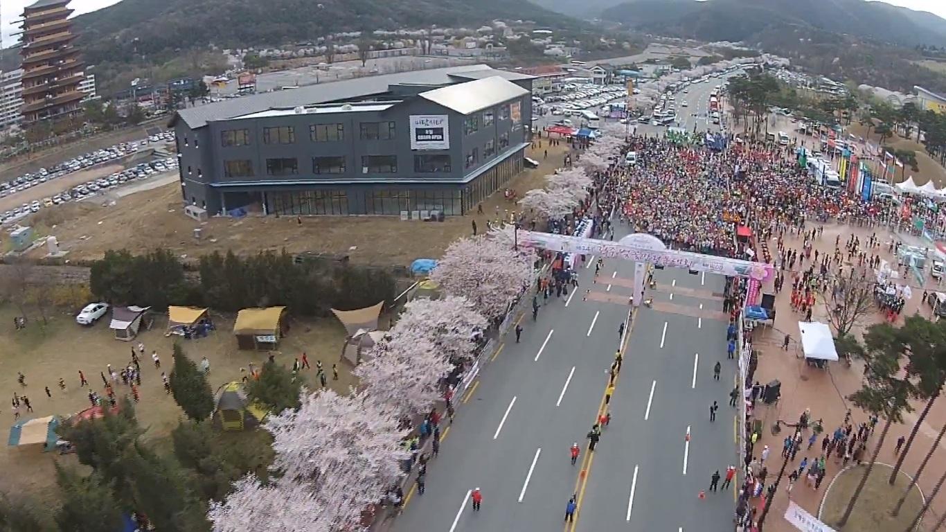 慶州さくらマラソン&ウォーク 2019.4.6